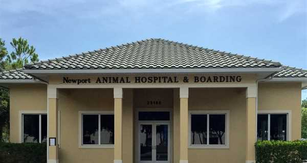 Newport Animal Hospital & Boarding