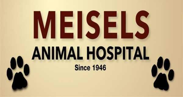 Meisels Animal Hospital