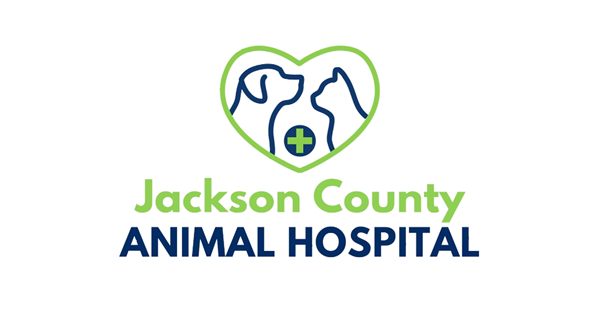 Jackson County Animal Hospital