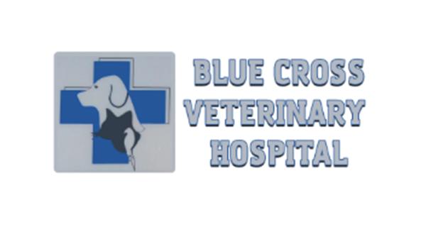 Blue Cross Veterinary Hospital